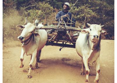 Birma_234