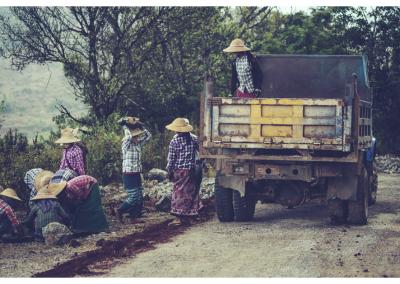 Birma_248