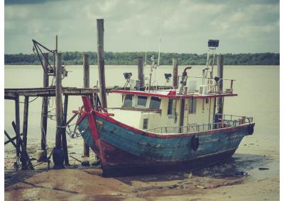Borneo_018