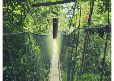 Borneo_057