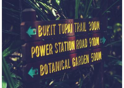 Borneo_071