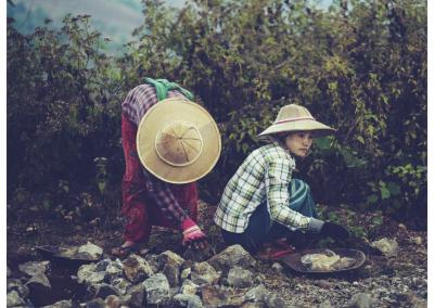 Birma_247