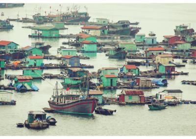 Wietnam_60