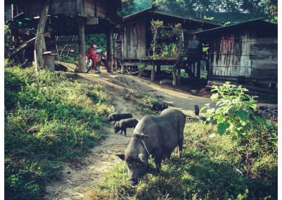 Tajlandia_048