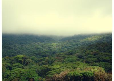 Kostaryka_Monteverde (10)