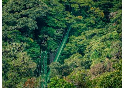 Kostaryka_Monteverde (11)