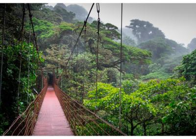 Kostaryka_Monteverde (22)