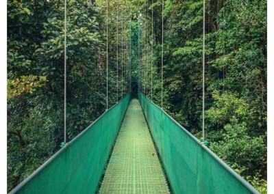 Kostaryka_Monteverde (3)