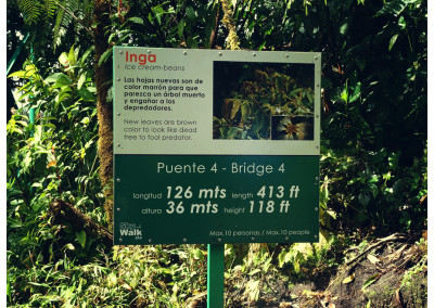 Kostaryka_Monteverde (4)