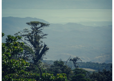 Kostaryka_Monteverde (9)