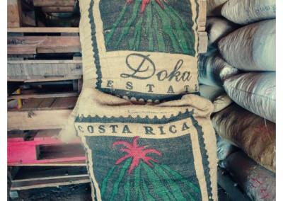 Kostaryka_Poas_Doka (6)