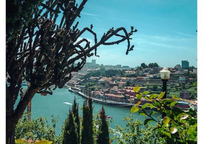 Porto_025_Palacio de Cristal Park