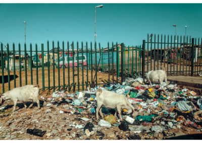 Johannesburg_022