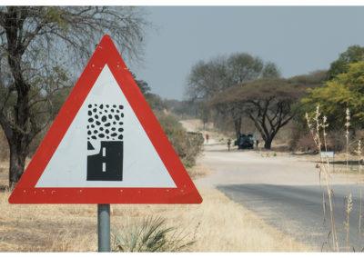rpa-botswana-zimbabwe-zambia_0097