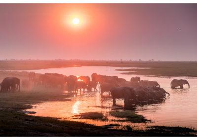rpa-botswana-zimbabwe-zambia_0118
