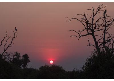 rpa-botswana-zimbabwe-zambia_0120