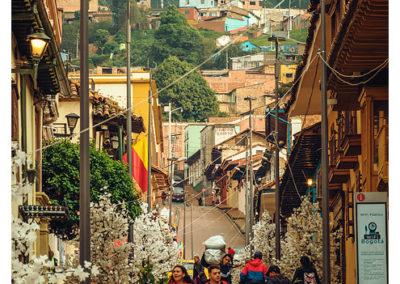 Bogota_073