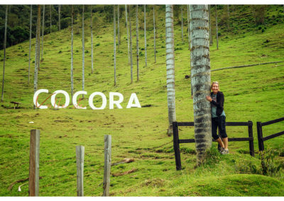 Cocora_016