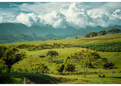 Guadelupe_072